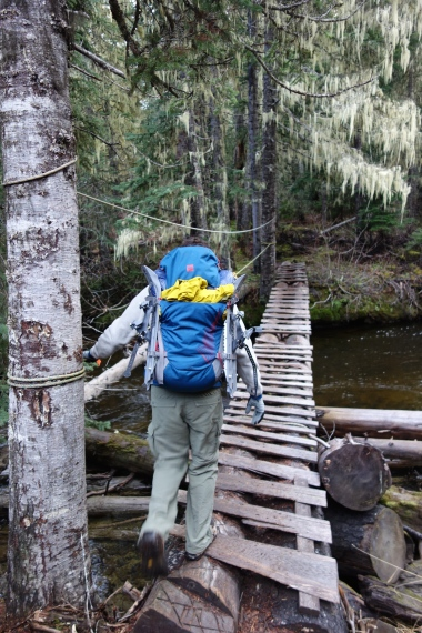 Bridge crossing on the summer trail